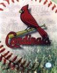 cardinals1's Avatar